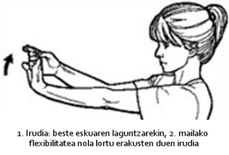 flexibilitatea