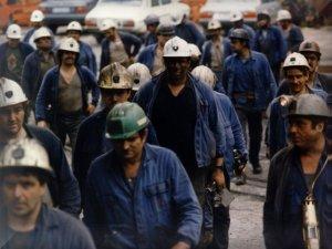 Mutua minería